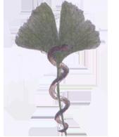 Logo Uschi Schreiber